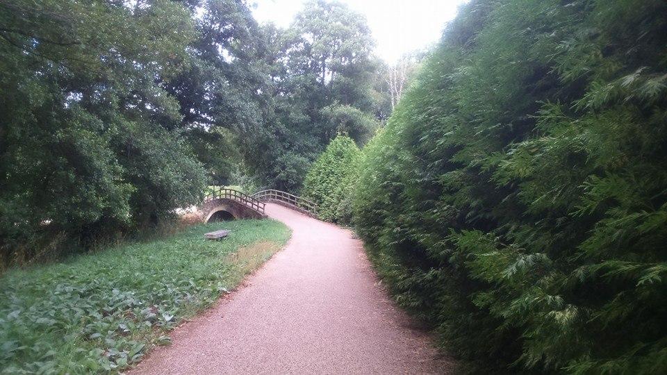 paseo fluvial del pontiñas