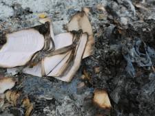 libro quemado