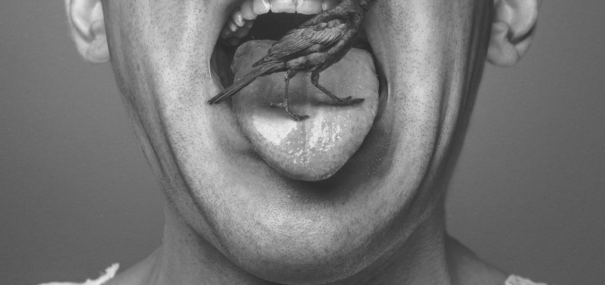 pájaro en lengua